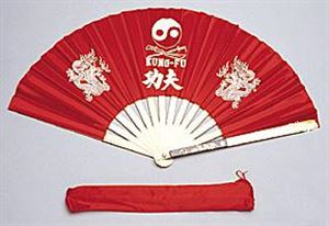 Picture of Kung Fu Fighting Fan