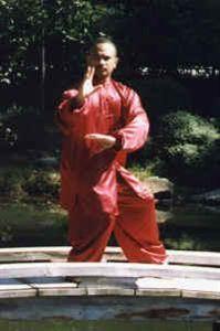 Picture of Baqua & Tai Chi Uniform