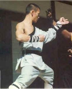 Picture of Shaolin Monk Wrap & Armbands