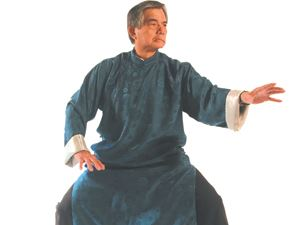 Picture of Shaolin Wudung Robe