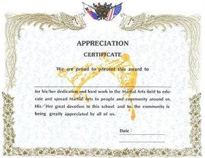 Picture of Martial Arts Appreciation Certificate