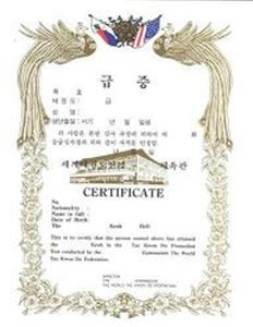Picture of TKD Gup Certificate