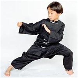 Picture of KIDS Kung Fu Uniform