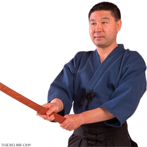 Picture of Kendo Keikogi Top