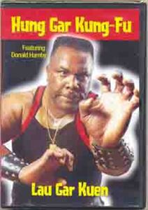 kung fu instructional dvd
