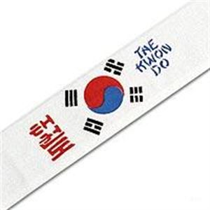 Picture of Tae Kwon Do with Korean Flag Head band