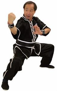 Picture of Kung fu Sash with Trim Around -Cotton
