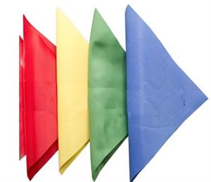 Picture of Professional Chain Whip Flags