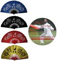 Picture of Tai Chi Fan Dragon Deluxe Kit