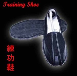 Picture of Wing Chun Shoes